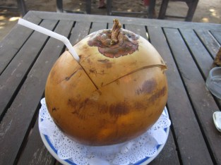 Young coconut, an acquired taste...